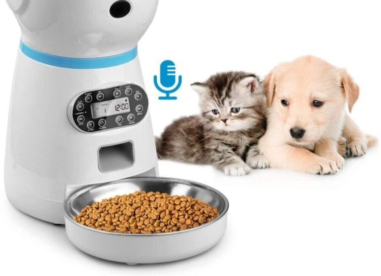 4 Best Automatic Pet Feeder US 2021