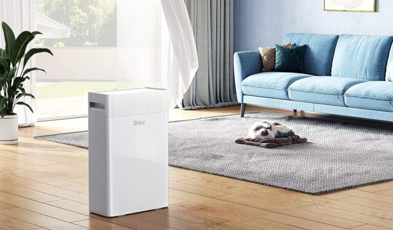 Best Air Purifier For Allergies US 2021